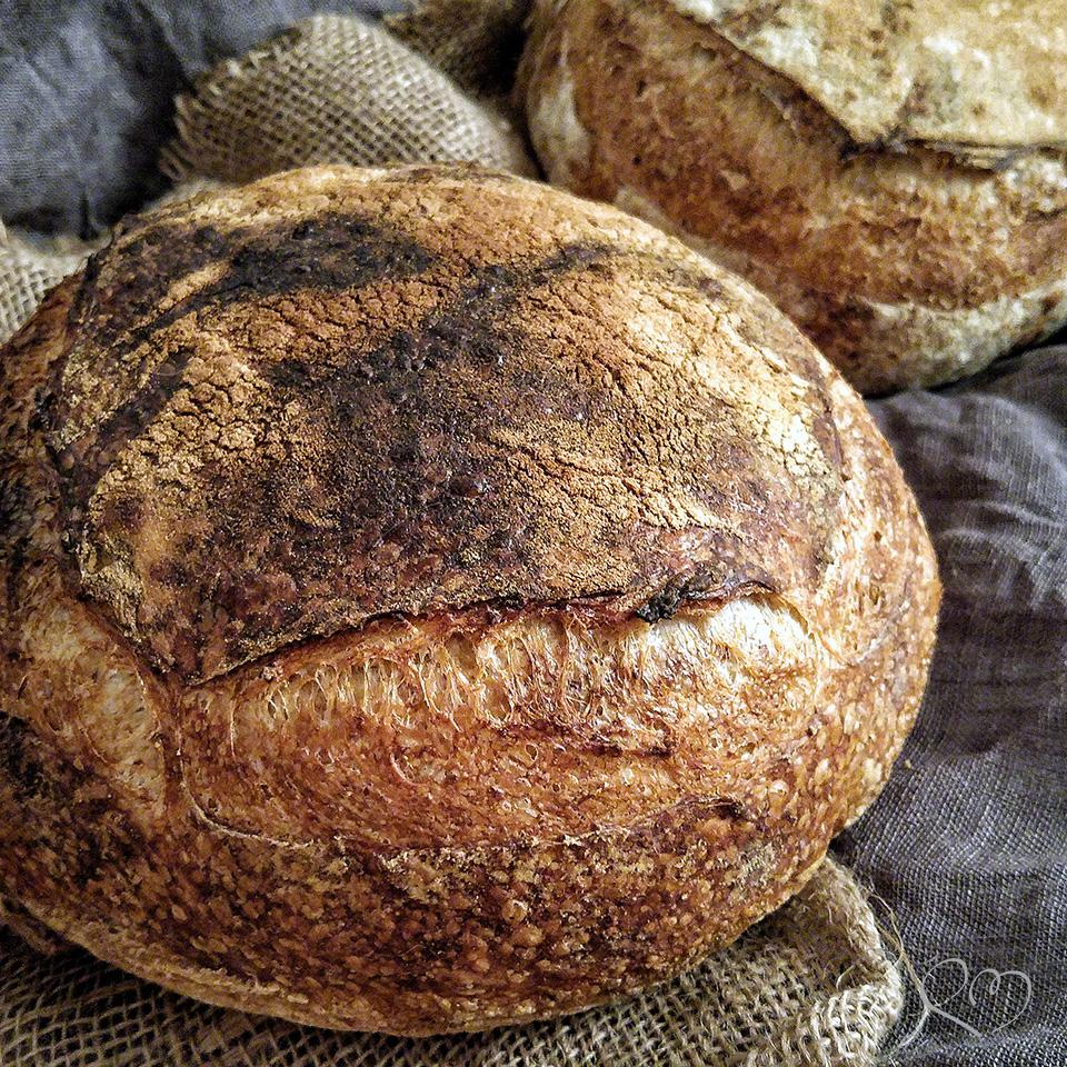 Tartine bread, la ricetta originale