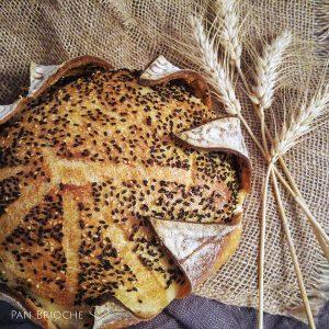 Pane di semola incamiciato con semi di sesamo