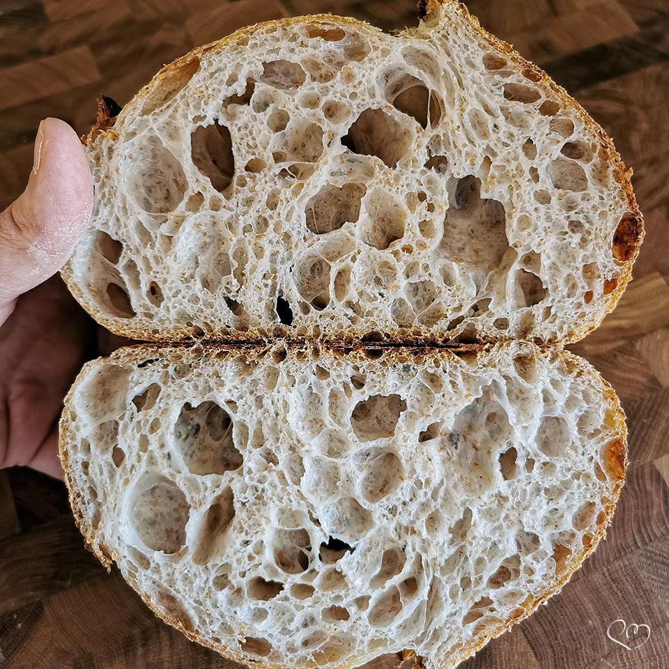 Alla ricerca del pane perfetto